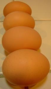 row-eggs
